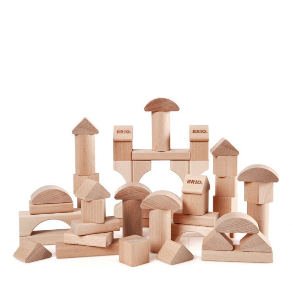 Brio 50 Piece Building Block Set