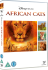 African Cats: Image 1