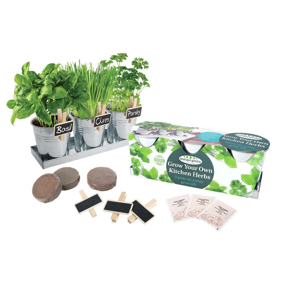 Kitchen Herb Garden Kit Grow Your Own Herb Kit Iwoot