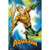 DC Comics Aquaman - 24 x 36 Inches Maxi Poster: Image 1