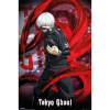 Tokyo Ghoul Ken Kaneki - 24 x 36 Inches Maxi Poster: Image 1