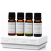 AromaWorks Signature Essential Oil Set 10ml: Image 1