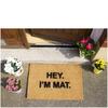 Hey I'm Mat Doormat: Image 2
