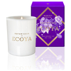 ECOYA Botanicals Evolution Midnight Orchid Candle - Mini Metro Jar: Image 1