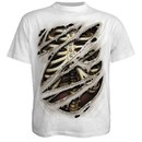 Spiral Men's DEVILS MARK T-Shirt - White