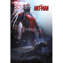 Marvel Ant Man Grow - 24 x 36 Inches Maxi Poster