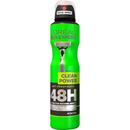 L'Oréal Paris Men Expert Clean Power 48H antiperspirant (250 ml)