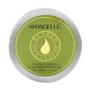 Spongelle Spongette Travel Size Body Wash Infused Sponge - Coconut Verbena