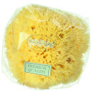 Hydrea London Honeycomb Sea Sponge, Size 4 - 4.5