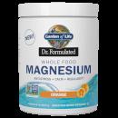 Magnesium Orange Powder 柳橙鎂粉 419.5g