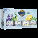 Organic Essential Oil Starter Kit - 4 Units