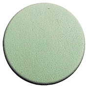 Lord & Berry Synthetic Sponge Green Round