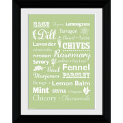 Herb Types - Collector Print - 30 x 40cm