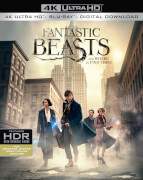 Fantastic Beasts and Where To Find Them - 4K Ultra HD