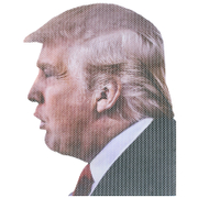 Ride With Car Stickers - Trump