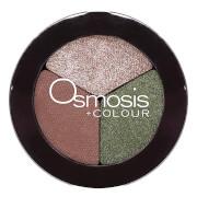 Osmosis Color Eye Shadow Trio - Evergreen