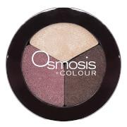 Osmosis Color Eye Shadow Trio - Spice Berry