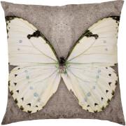 Multi Colour Butterfly Cushion - Multi (45 x 45cm)