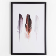 Graham & Brown Neutral Feather Trio Framed Print Wall Art