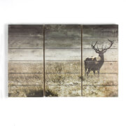 Graham & Brown Highland Stag Print On Wood Wall Art