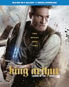 King Arthur: Legend of the Sword 3D (Includes 2D Version) (Digital Download)
