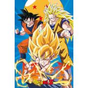 Dragon Ball Z 3 Gokus Evo - 61 x 91.5cm Maxi Poster
