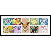 Pokémon Eevee Evolution - 30 x 12 Inches Framed Photograph