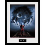 Prey Key Art - 16 x 12 Inches Framed Photograph