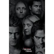 The Vampire Diaries Faces - 61 x 91.5cm Maxi Poster
