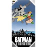 The Dark Knight Returns Glass Poster - Batman and Robin (60 x 30cm)