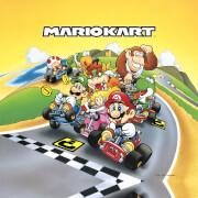 Nintendo Mario Kart 2 Canvas