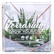 Grown Your Own Terrarium