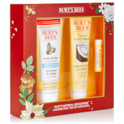 Burt's Bees Natural Indulgence Gift Set