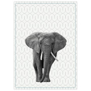 Cotton Tea Towel - Elephant
