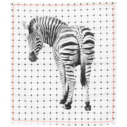 Cotton Tea Towel - Zebra