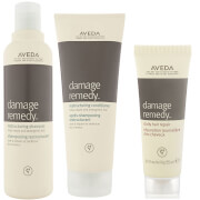 Aveda Damage Remedy Restructuring Shampoo and Conditioner Duo with Daily Hair Repair Sample