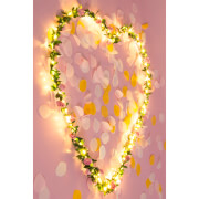 MYO Flower Fairy Lights
