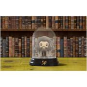 Veilleuse Hagrid dans Dôme - Harry Potter