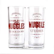 Harry Potter Glasses Set (Muggles)