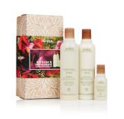 Aveda Rosemary Mint Gift Set (Worth £40)