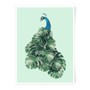 Jonas Loose Peacock Art Print