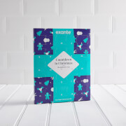 Exante Low Sugar Chocolate Advent Calendar