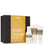 Aveda Repair Damage Travel Essentials