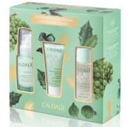 Caudalie Vinopure Natural Anti-Blemish Routine
