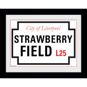 """Strawberry Field - 8"""""""" x 6"""""""" Framed Photographic"""