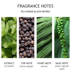 Molton Brown Black Peppercorn Aroma Reeds 150ml: Image 6