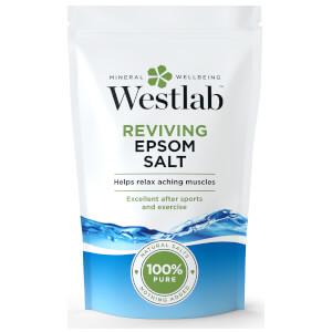 Westlab Bittersalz, 1 kg