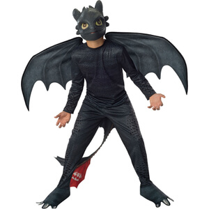 Dreamworks How to Train Your Dragon Boys' Toothless Fancy Dress