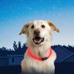 Nite Howl LED Safety Necklace