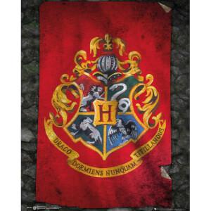 Harry Potter Hogwarts Flag Mini Poster - 40 x 50cm
